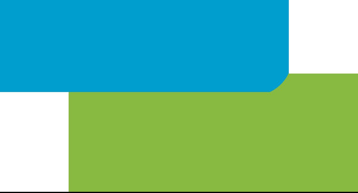 Logo Neolink Telecom