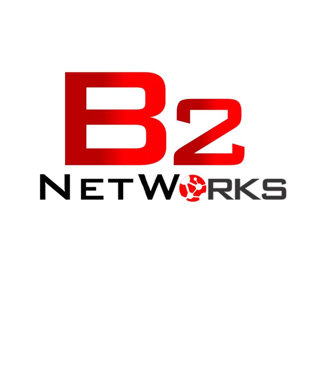 Logo B2Networks